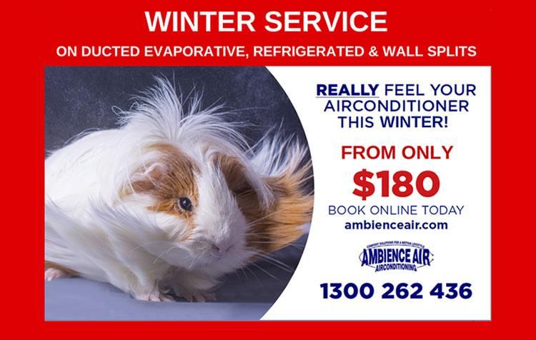 Winter-Service-Flyer_2017_2-e1491281742758